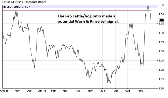 february-live-cattle-lean-hog-ratio-daily